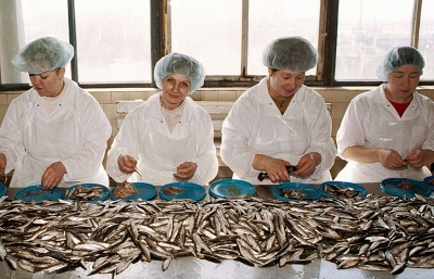 Russia, Latvia to discuss situation with fish imports next week — watchdog